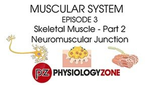 PhysiologyZone - Episode 3