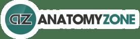AnatomyZone
